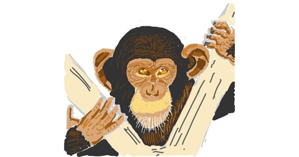 Monkey drawing by Coyote
