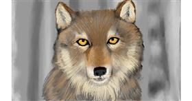 Drawing of Wolf by Tim