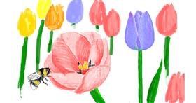 Tulips drawing by tRay