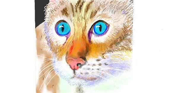 Cat drawing by GJP