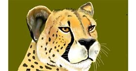Drawing of Cheetah by Tim