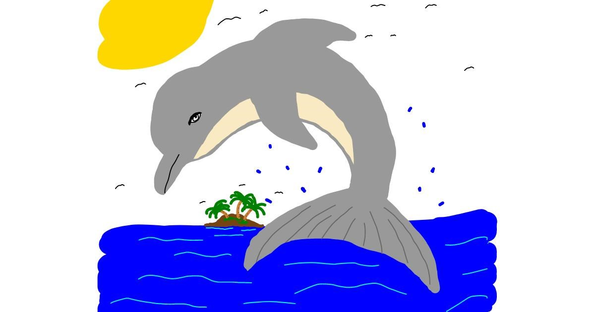 Dolphin drawing by Zerous 👩🎤
