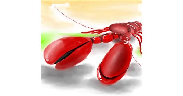 Lobster drawing by Bro