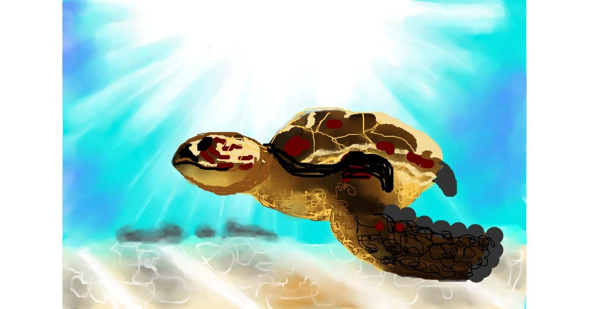 Sea turtle drawing by Sirak Fish