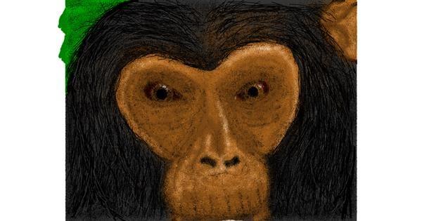 Monkey drawing by Malone