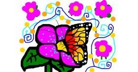Butterfly drawing by hayzidayzi