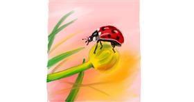 Ladybug drawing by Rush