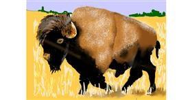 Bison drawing by SAM AKA MARGARET 🙄