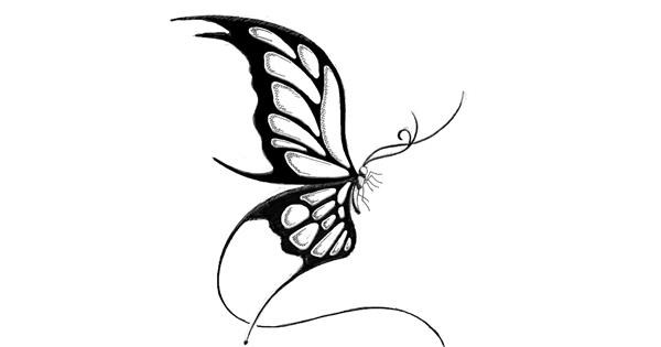 Butterfly drawing by lil slut