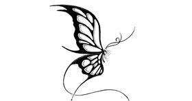 Butterfly drawing by lil slut