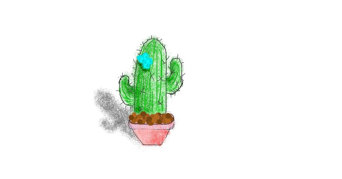 Drawing of Cactus by coconut