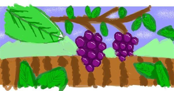 Grapes drawing by saRA