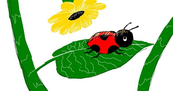 Ladybug drawing by Laynie.Wuz.Here
