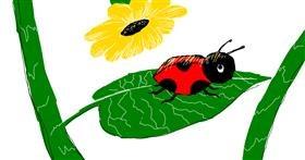 Ladybug drawing by Laynie.Wuz.Here