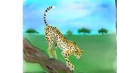 Cheetah drawing by Kai 🐾