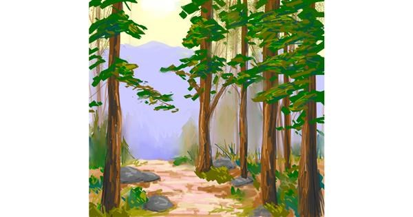 Forest drawing by Scott