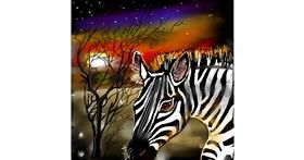 Zebra drawing by Leah