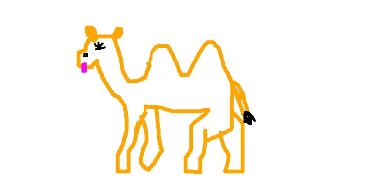 Drawing of Camel by Dusk