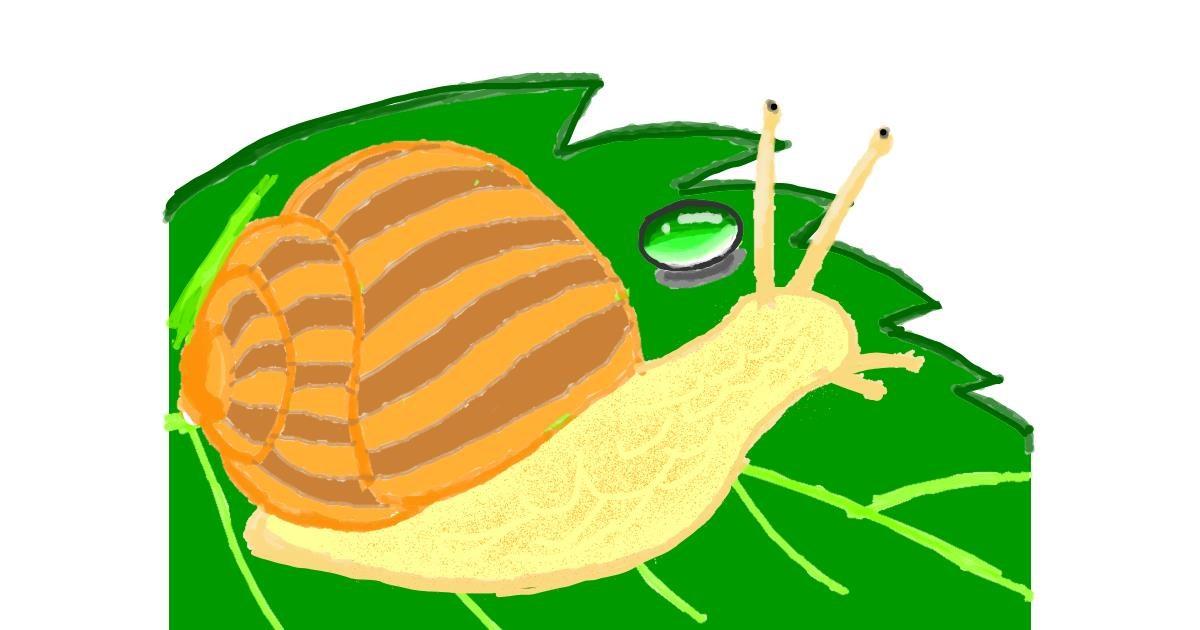 Snail drawing by Vicki