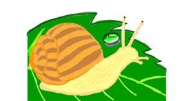 Snail drawing by Vicki