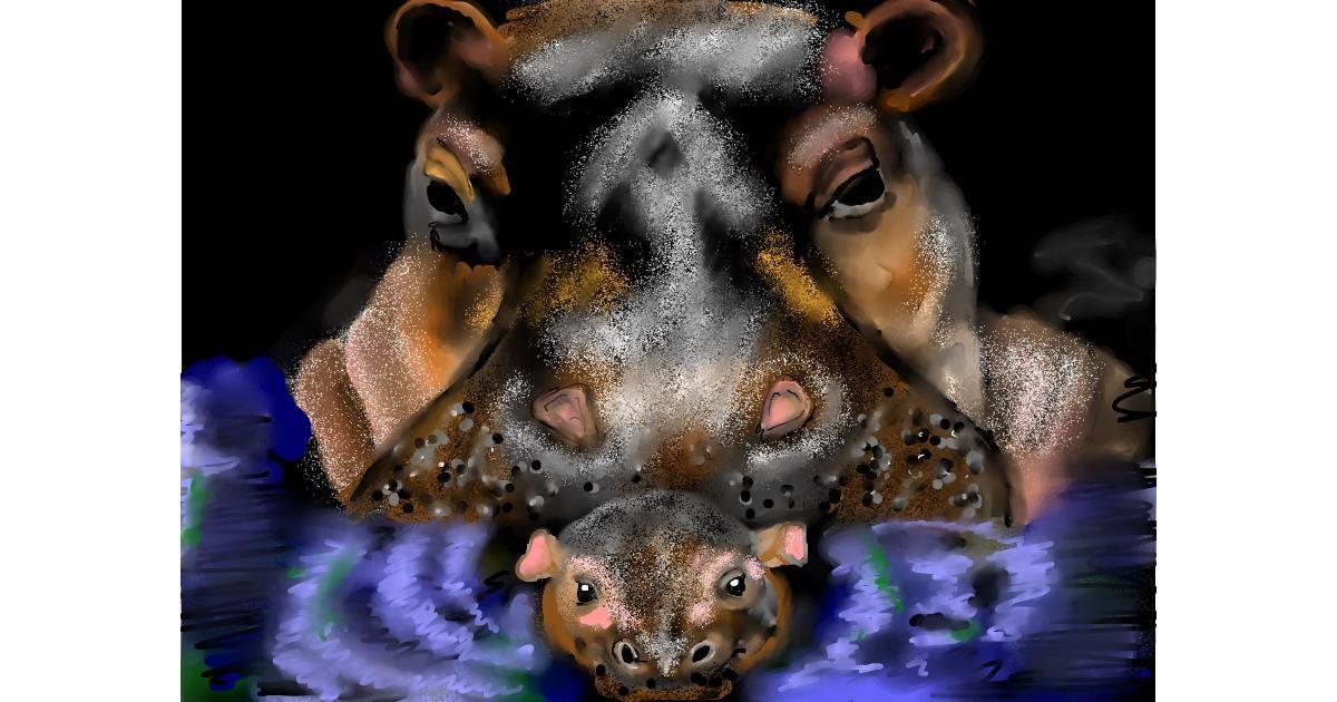 Hippo drawing by SAM AKA MARGARET 🙄