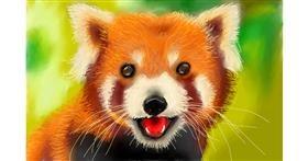 Red Panda drawing by Bicho