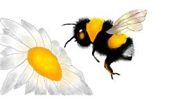 Drawing of Bumblebee by S.Elizabeth