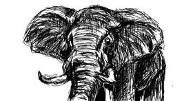 Elephant drawing by jasluna