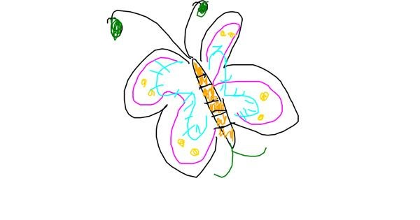 Butterfly drawing by Anonymous