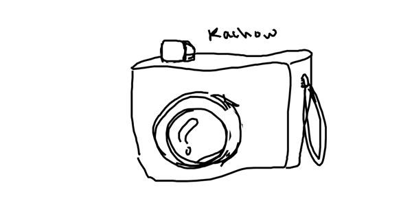 Camera drawing by horse