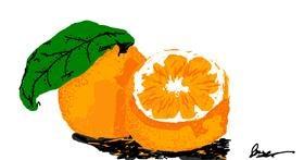 Drawing of Orange by ;kthkth