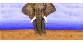 Drawing of elephant by Mari