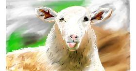 Drawing of Sheep by Soaring Sunshine