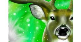 Drawing of Reindeer by Wizard