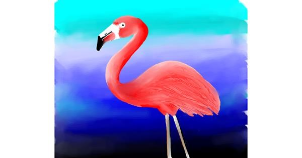 Flamingo drawing by Sony
