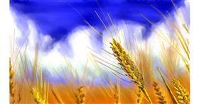 wheat drawing by teidolo