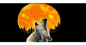 Drawing of Wolf by Debidolittle