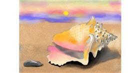 Seashell drawing by SAM AKA MARGARET 🙄