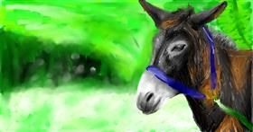 Drawing of Donkey by Soaring Sunshine