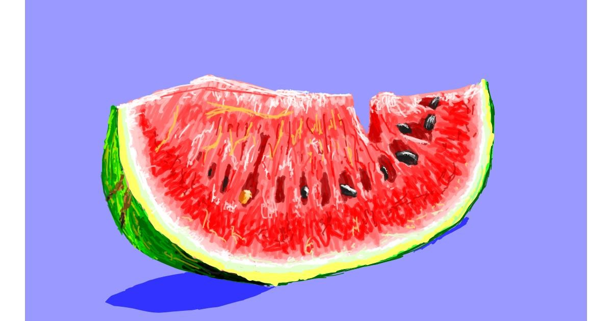Watermelon drawing by Sam