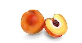 Peach drawing by Jan