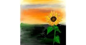 Drawing of Sunflower by NUPS
