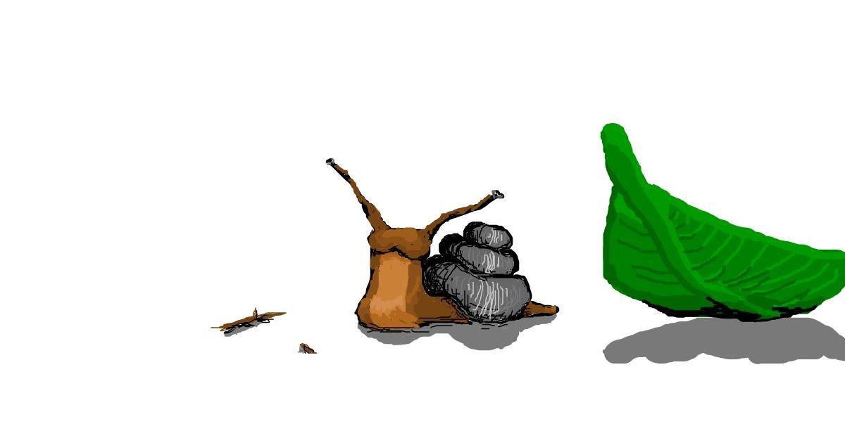 Snail drawing by 7y3e1l1l0o§
