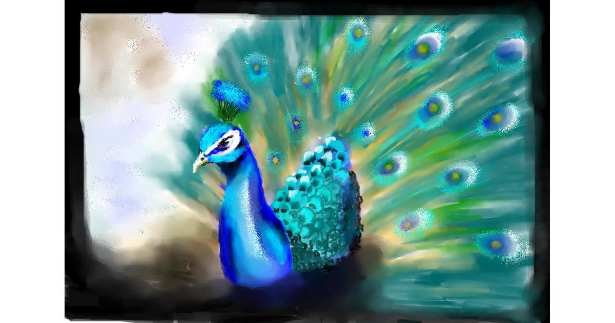 Peacock drawing by 🌏rhythm💐