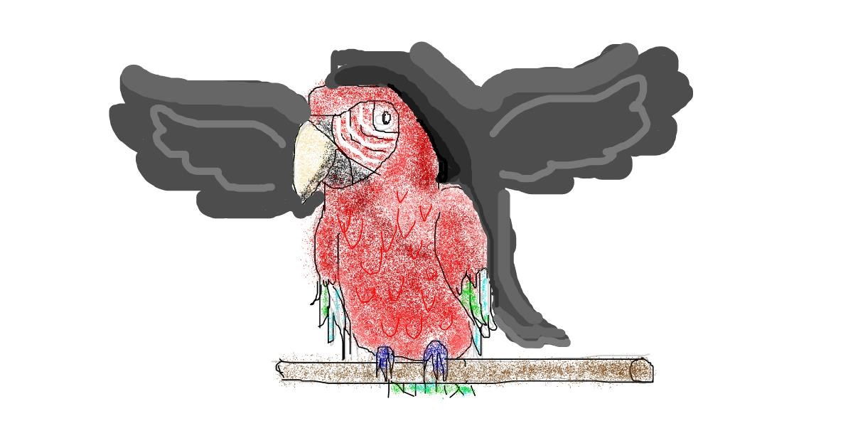 Parrot drawing by coconut