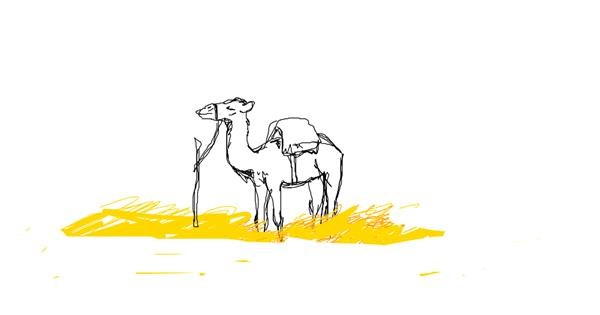Camel drawing by Kori LOVES Drawing!!