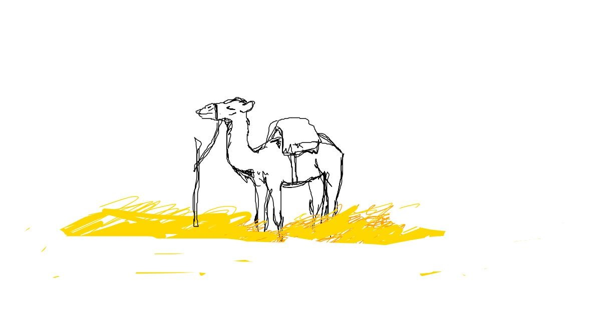 Drawing of Camel by Kori LOVES Drawing!!