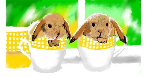 Rabbit drawing by SAM 🙄