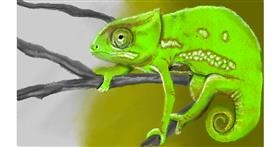 Chameleon drawing by Tim