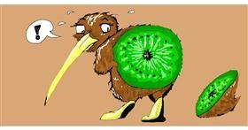 Drawing of Kiwi fruit by jule
